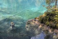 swiss lake Blausee 1
