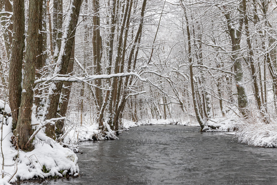Winter landscape Harz Selketal Selke in winter