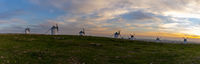 A panorama view of the historic white windmills of La Mancha above the town of Campo de Criptana at sunset