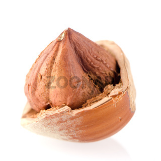 Cracked hazelnut