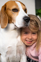 3 year old child hugging best friend dog. Happy childhood with pet Beagle.