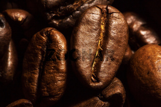 Kaffeebohnen Makro