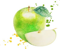 Watercolor Green Apple Isolated White Background