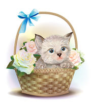 Illustration of  the fluffy kitten sitting in a basket with roses.