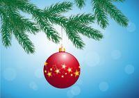 fir branch with Christmas bulb