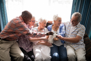 Smiling senior friends playing with rabbit at nursing home