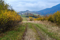 Hazy and overcast autumn Carpathian Mountains and dirty countryside path, Ukraine.