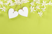 White wooden hearts with white flowers on a green background with space for copy