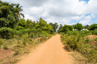 Dirt road in the countryside near the town of Watamu in Kenya