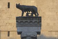 capitoline wolf, Aquileia, Friuli-Venezia Giulia,