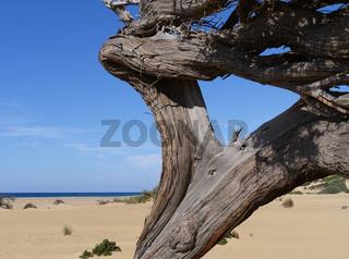 Strand von Piscinas an der Westküste von Sardinien