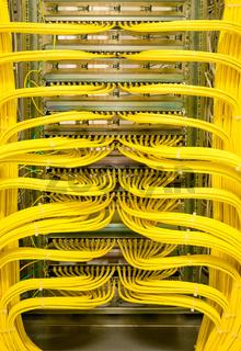 Netzwerkswitch mit RJ45 Netzwerkkabel in einem Rechenzentrum