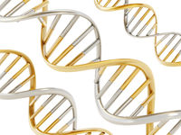 Gold and silver colored dna helix. 3D illustration