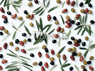 pattern with different olives and olive branches