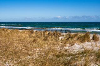 Düne an der Ostseeküste in Zingst auf dem Fischland-Darß.
