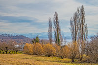 Alpine panorama near Seefelden at Lake Constance
