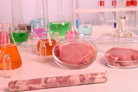 Cultured Meat Grown by in Vitro Cell Culture of Animal Cells