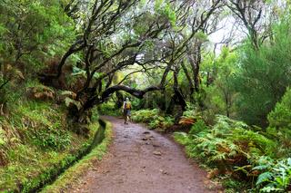 Hike on Madeira