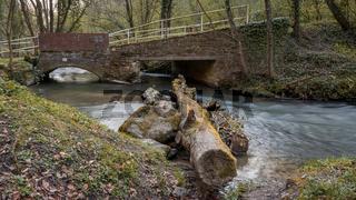A springtime walk through the Angertal in Ratingen, North Rhine-Westphalia, Germany