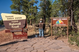 An entrance road going in Kaibab National Forest, Arizona