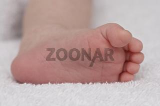 Fuss eines Neugeborenen