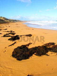 Great Ocean Road Beach - Australia