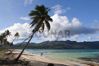 Strand Playa Rincon bei Las Galeras, Dominikanische Republik