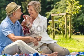 Smiling pensioner couple picnicking summer