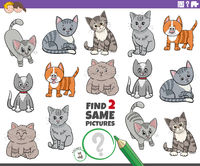 find two same cartoon cats characters educational game