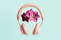 Pink headphones with flowers 3D illustration