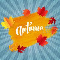 Orange Blot With Autumn Leaves Poster