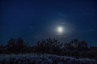A full moon shining over a rural heather landscape at night