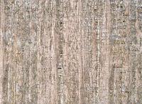 wooden texture II