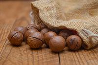 The macadamia nuts