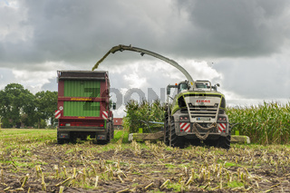 Corn harvest vehicles frontal rear 1