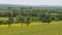 Osterwieck - Landscape near Bühne/Rimbeck, view over the Harz Mountains foreland, Germany