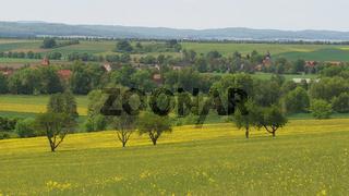 Osterwieck - Landschaft bei Bühne/Rimbeck, Blick über das Harzvorland, Deutschland