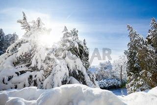Deutschland, Baden-Württemberg, Bodensee, Überlingen am Bodensee, Winterlandschaft, Stadtpark
