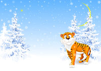Tiger in the winter snowy forest