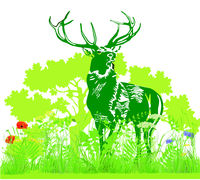 Deer in the meadow illustration