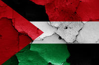 flags of Palestine and Yemen painted on cracked wall