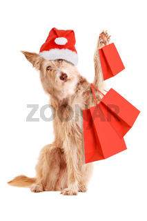 Dog with Christmas hat and shopping bags isolated
