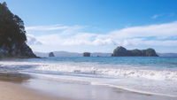 beautiful beach at Hahei New Zealand