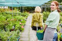 Gärtnerin in der Ausbildung transportiert Pflanzen