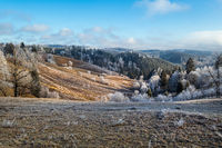 Winter coming. Picturesque moody morning scene in late autumn mountain countryside with hoarfrost on grasses, trees, slopes. Ukraine, Carpathian Mountains.