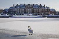 Nordkirchen Castle in winter with a hoecker swan on the ice, Nordkirchen, Germany, Europe