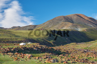 Mongolian landscape with mountain steppe under running cumulus clouds on blue sky, yurts and goats herd
