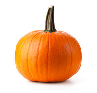 Pumpkin Isolated Over White Background