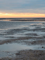 Lower Saxony Wadden Sea off Cuxhaven Sahlenburg at low tide, Germany