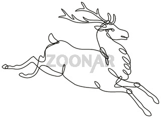 Red Deer Stag or Buck Jumping Side View Continuous Line Drawing